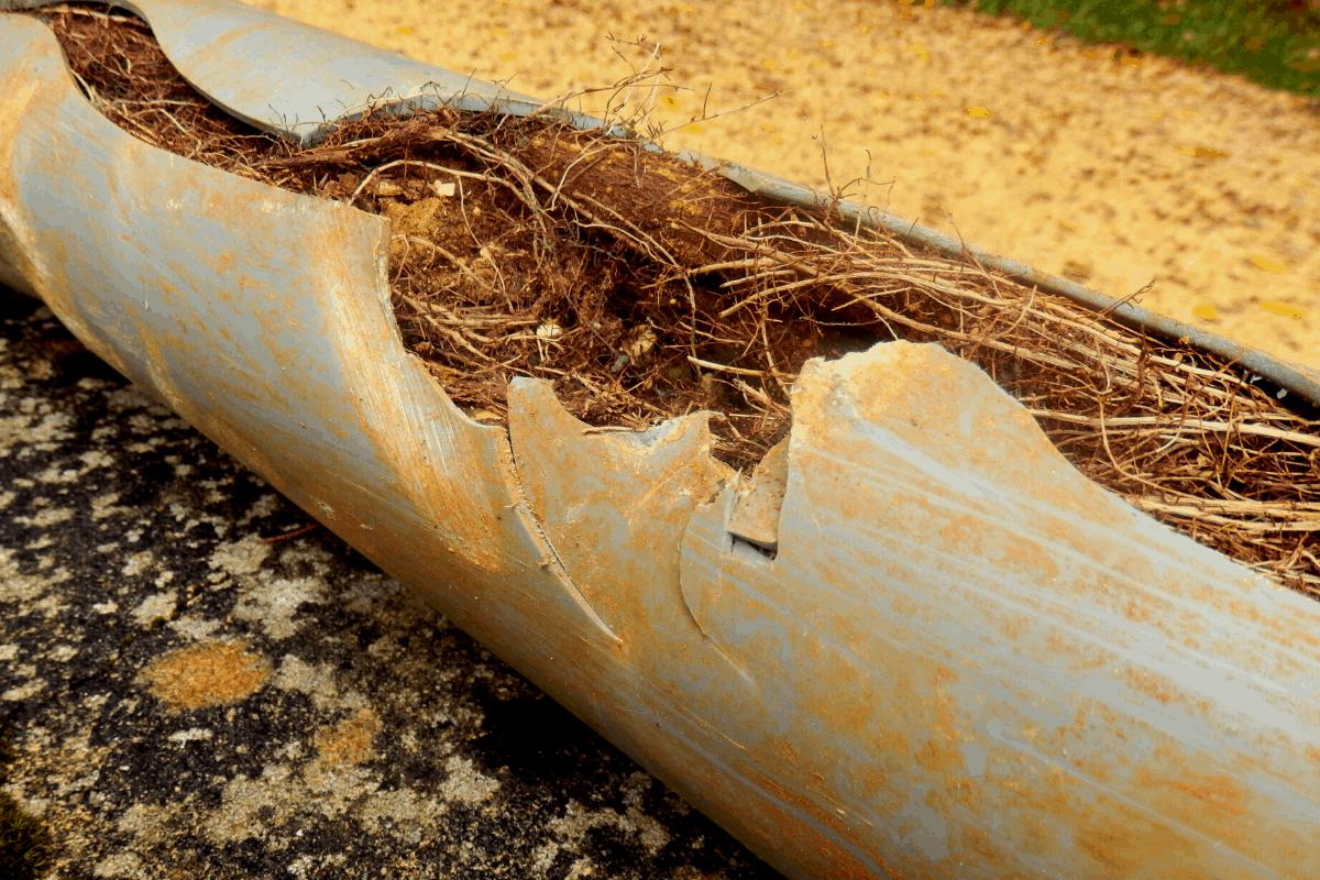 brookhaven-sewer-line